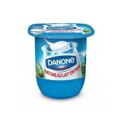 Danone volle yoghurt natuur 125g